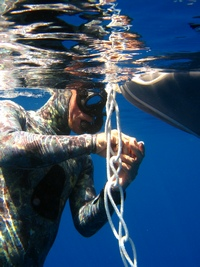 Freediving Instructor Course (40K)
